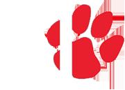 FSU paw logo