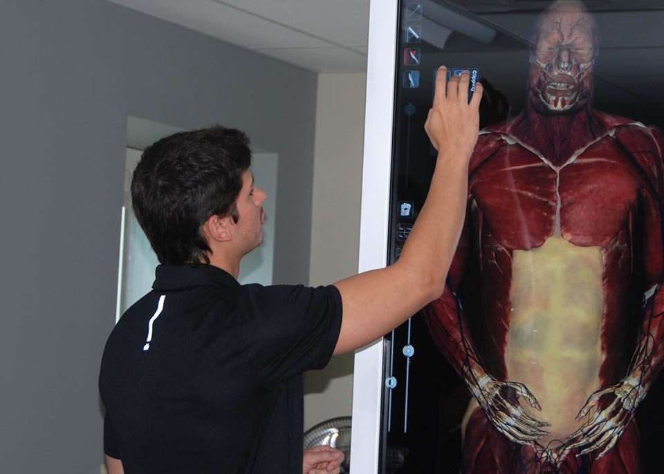 student studying human anatomy in advanced graduate program
